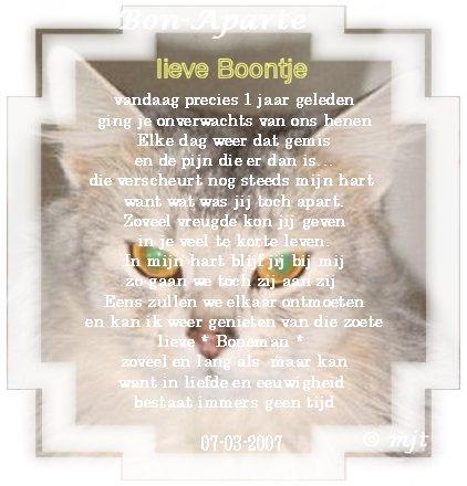 Boontje-in-mem2007.…